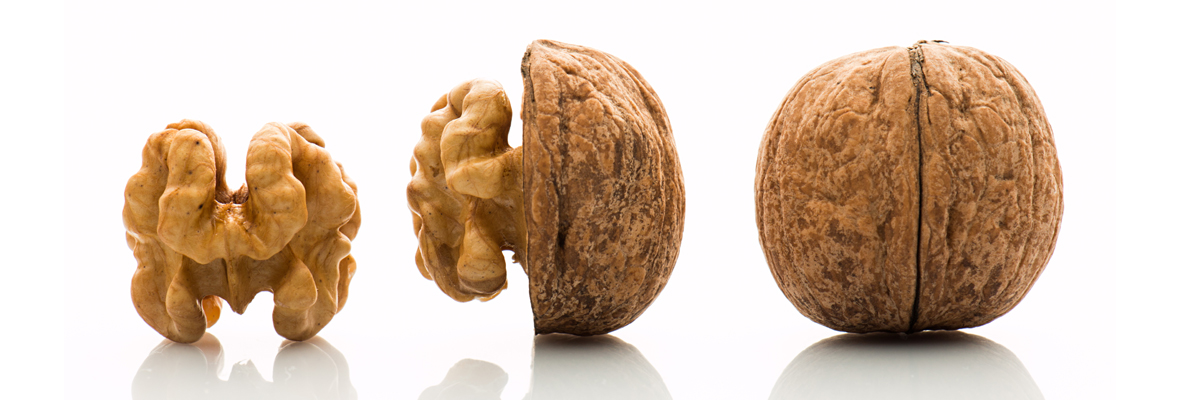 10 foods that boost your brain power!